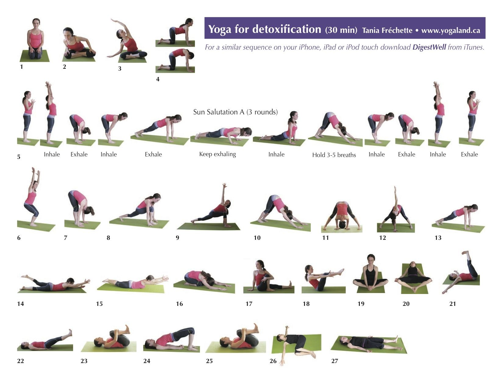 Yoga positions pdf free download