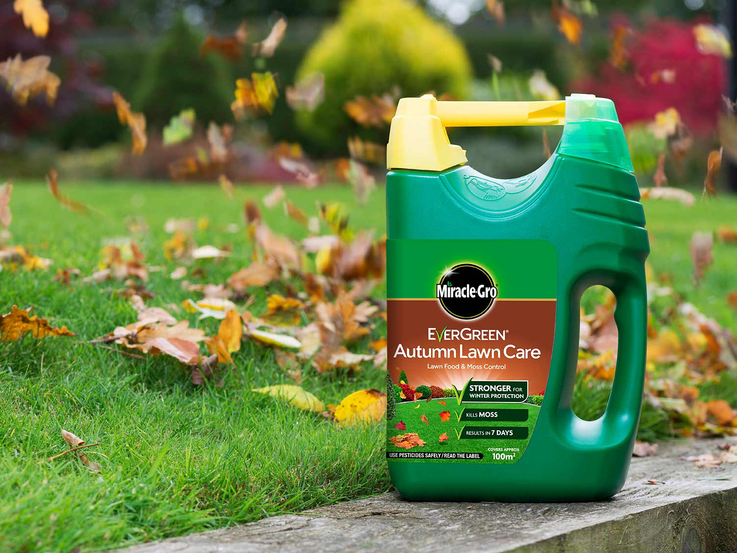evergreen grass weed and feed instructions