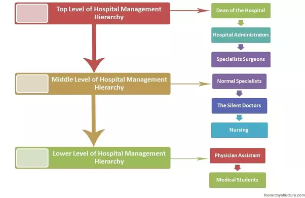 Department of health hospital in the home guidelines