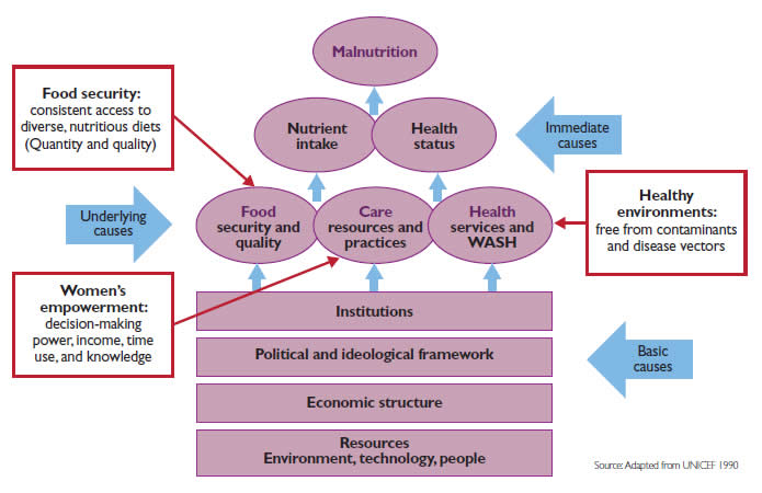 Public health nutrition from principles to practice pdf