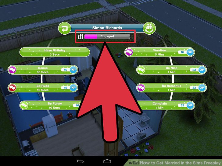 Sims 3 wii cheats how to get married
